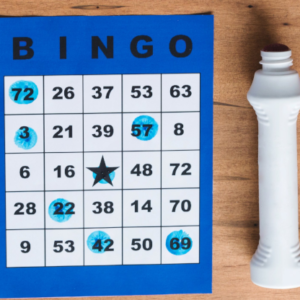 Bear Refuge Bingo